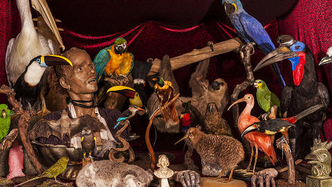 Taxidermy at Victor Wynd Museum. Pic: The Victor Wynd Museum.