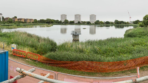 Woodberry Wetlands. Pic: Penny Dixie