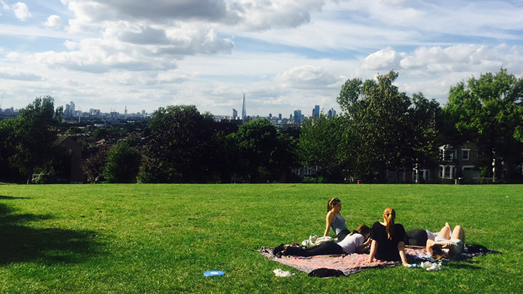 Telegraph Hill is the perfect location for a picnic in the summer. Pic, Imogen Lodewyke