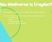 How biodiverse is Croydon?