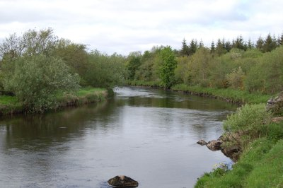 East-Mayo-Anglers'-Association-Fishery-on-the-River-Moy