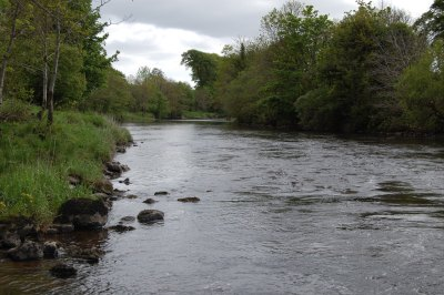 East-Mayo-Anglers'-Fishery