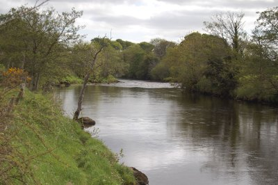 East-Mayo-Anglers-Fishery