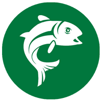 Salmon-Season-East-Mayo-Anglers