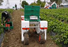 Lincolnshire AI project set to revolutionise UK farming