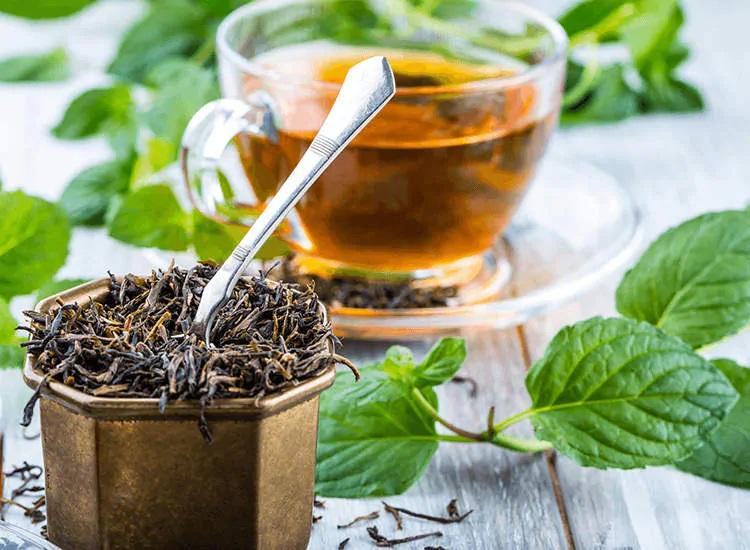 Nilgiri Tea - Indian tea