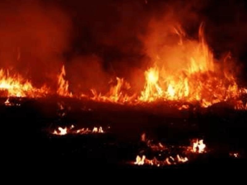 40 shanties gutted in a fire in Salt Lake