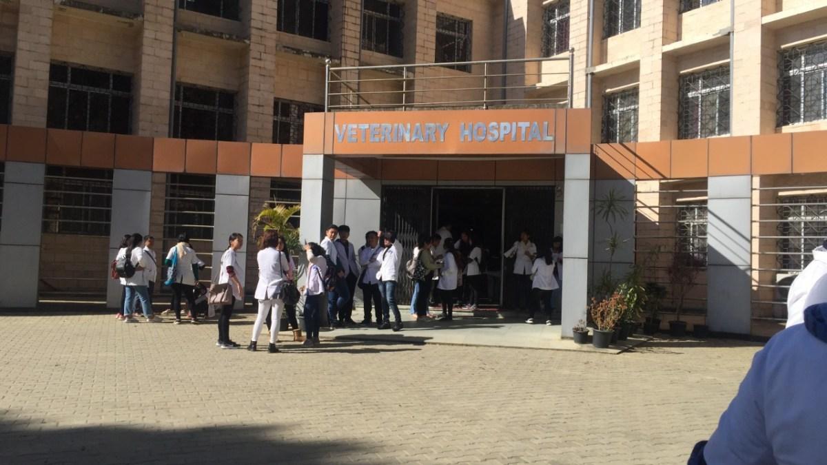 Tripura: Hundreds of unemployed vet graduates stare at uncertain future