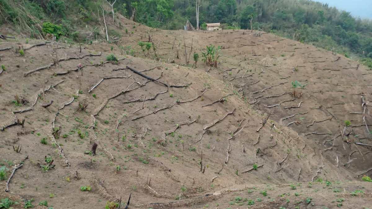 Nagaland drought-like situation
