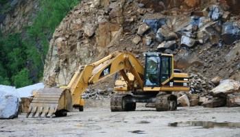 NGT directs Meghalaya govt to file affidavit on action taken against illegal miners