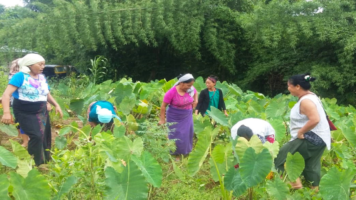 Nagaland seeks to focus on agriculture to eradicate poverty by 2030