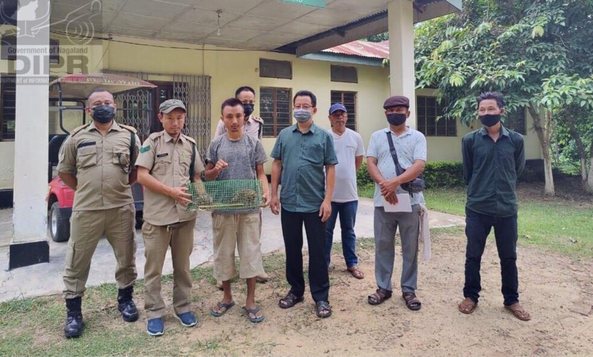 4 kids find abandoned leopard cubs in Nagaland's Tening village