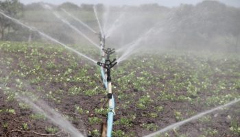 Lying incomplete for 46 years, Assam irrigation project to be shut down