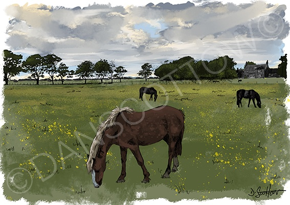 Kilrenny horses