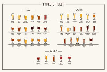 types of beer, chart, Lehigh Valley Beer Week, LV Beer Week