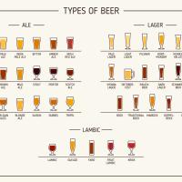In honor of Lehigh Valley Beer Week: a handy chart
