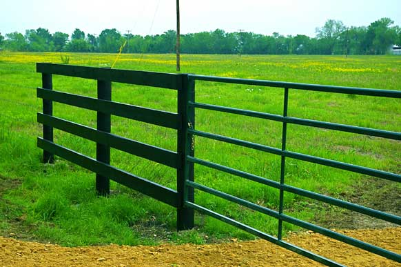 42-8-paris-texas-meadow-pond-entry1