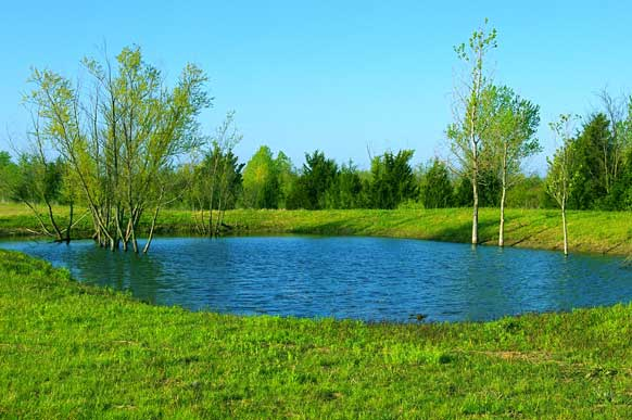 42-8-paris-texas-meadow-pond1