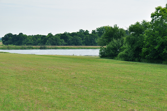 89 8 Acres Texas Land For Sale - Level Meadow and Stocked