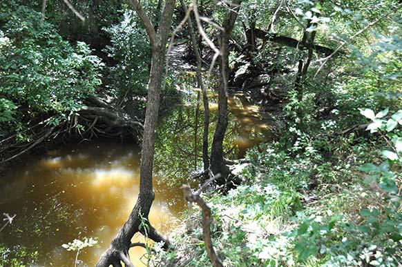 195_creek