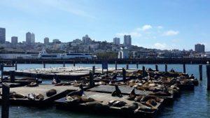 San Francisko - Pier 39