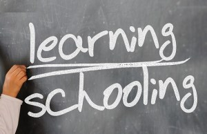 Informational Session – Have You Ever Thought Of Being On The TE School Board?