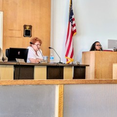 City Council fails to override Weaver's budget veto:  next steps uncertain