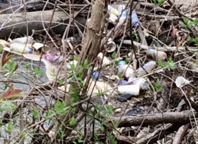 "Loving Gilkey Creek, one neighbor at a time:  residents plead ""no dumping"""