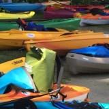 "Flint River Flotilla draws 300 paddlers,  ""gazillions of beautiful kayaks"""