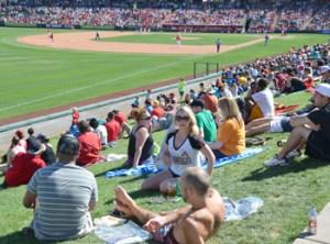 Enjoying an Angels game at Tempe Diablo Stadium