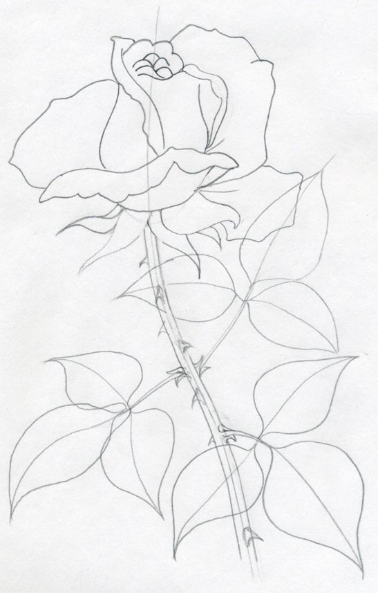 how to draw a rose leaf