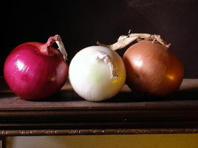 Food Art Onions A Still Life Demonstration