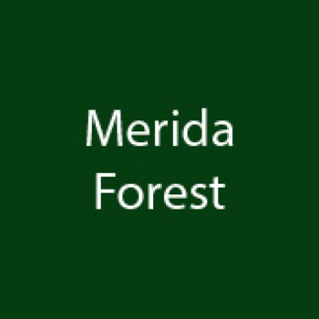 Page simple martelée Merida Forest Vert