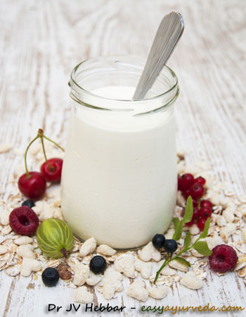 curd buttermilk yogurt