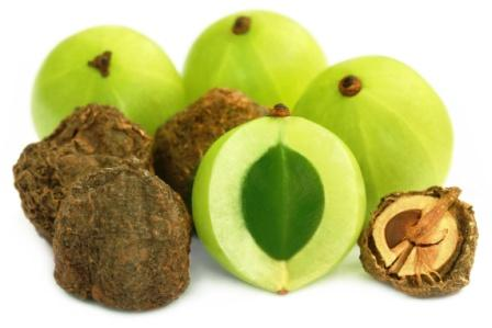 amla fresh and dry fruits