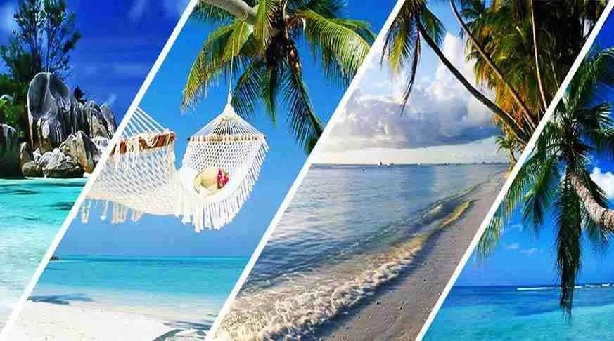 Sun and Beach Plus