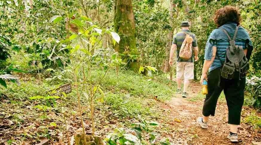 vegas grande waterfall trinidad. excursion a vegas grande. Escursioni a trinidad