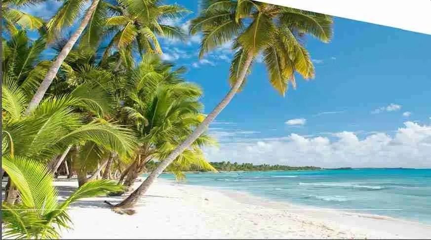 Sun and Beach 3