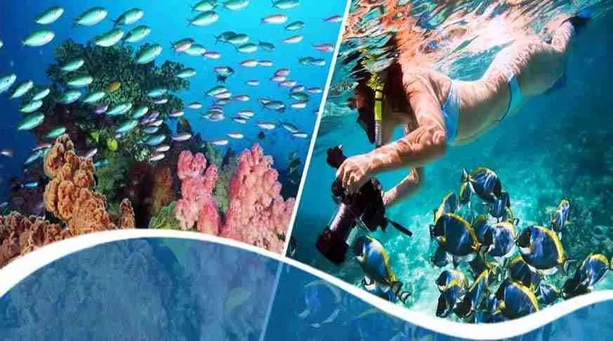 Diving and driving in Cuba, Las Terrazas ,Viñales. Bay of Pigs