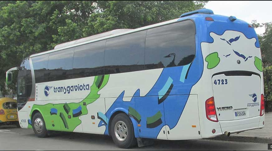 Bus for Groups