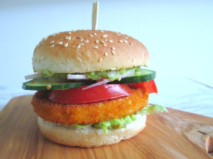 vega visburger