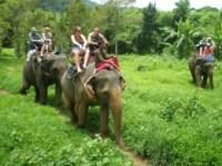 Khao Lak - Elefantenreiten