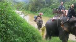 Khao Sok Safari - 3 Tage & 2 Naechte