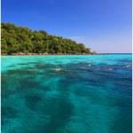 Snorkeling at Surin Islands National Park
