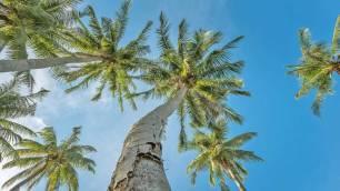 Premium am Strand von Racha Island