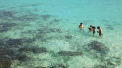 Racha Island Day Trip - Snorkeling
