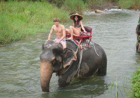 Elephant Trekking in Phang Nga