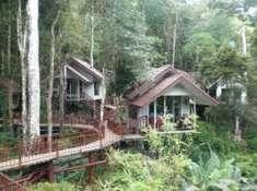 Khao Sok Treehouse Tour