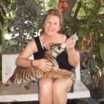 Baby Tiger Thailand Samui