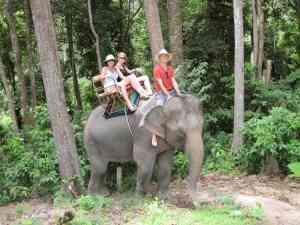 Elephant riding tours Thailand